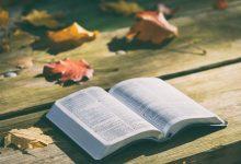 guiados biblia testamento